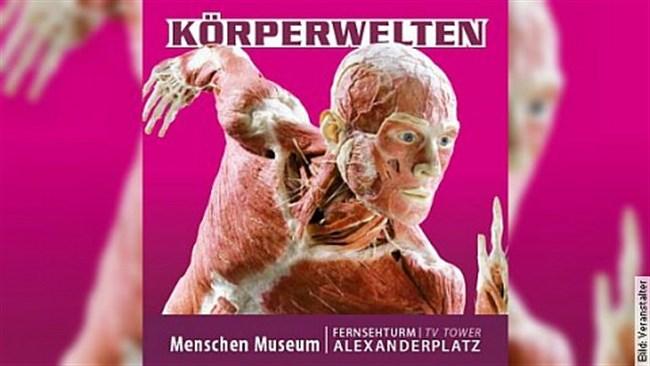 KÖRPERWELTEN Berlin im Menschen Museum - Facetten des Lebens