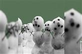 Drei Männer im Schnee - Komädie von Erich Kästner