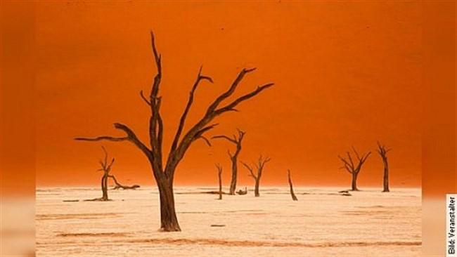 Traumhaftes Namibia - von und mit Andreas Huber