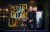 Cesar Millan -