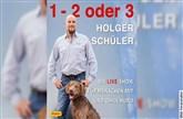 "HOLGER SCHÜLER Der Hunde-Erziehungsberater – ""1-2 oder 3"""