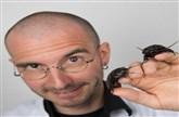 Dr. Mark Benecke - Insekten auf Leichen