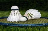 Badminton World Championships 2019