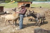 Tier und Spielpark Bichlbach