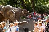 Tierpark und Tropen-Aquarium Hagenbeck