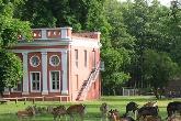 Ivenacker Tiergarten / Landesforst Mecklenburg-Vorpommern